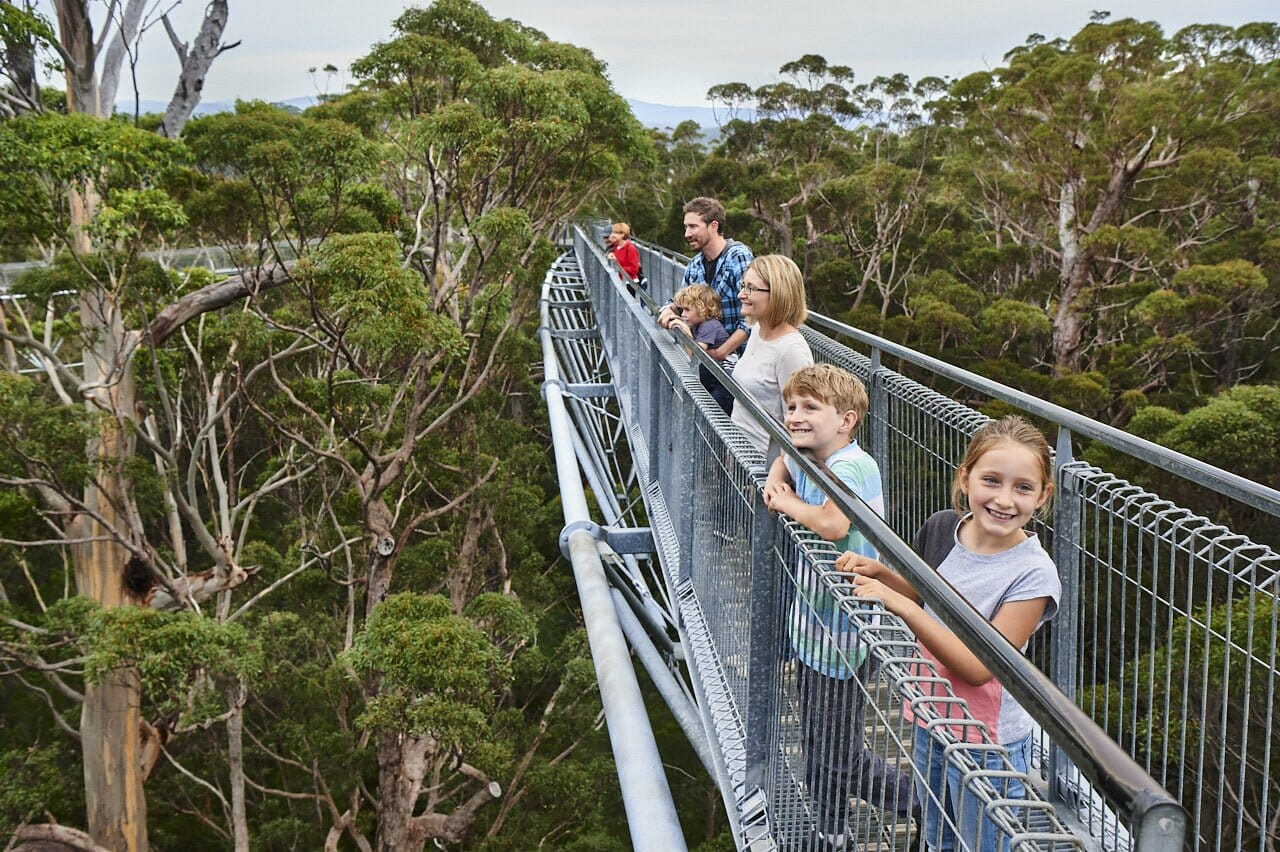 Kids standing on the tree top walk platform 40m above the Valley of the Giants forest floor