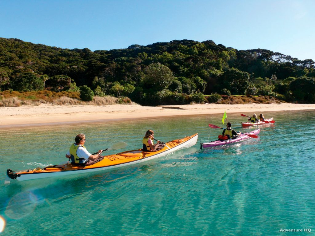 family kayaking in the bay of islands in summer