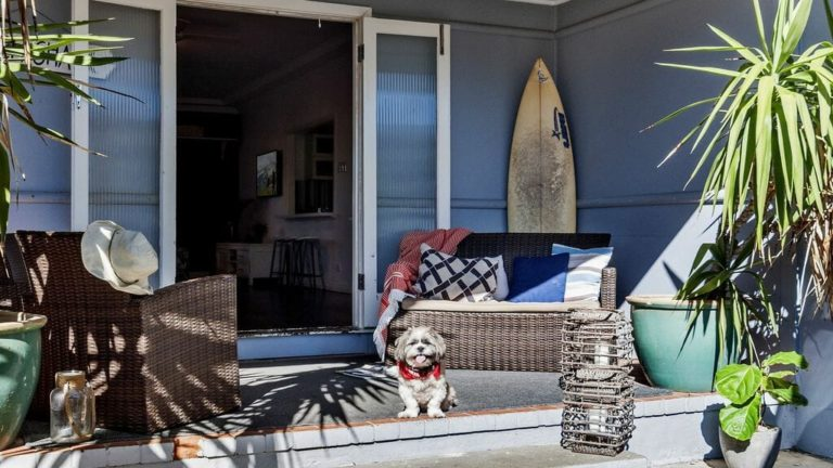 pet friendly holiday homes