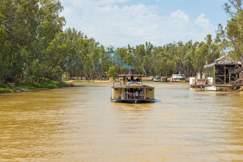 Murray River paddle steamer cruise
