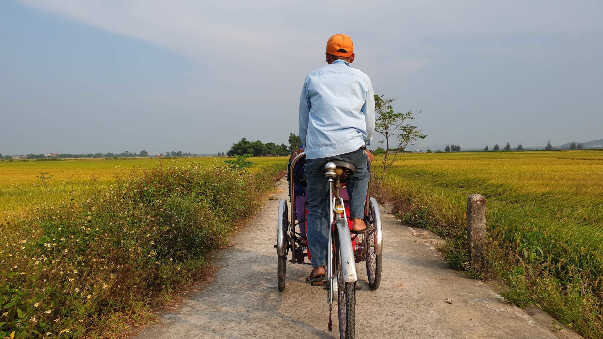 Take a ride through the ricefields on a rickshaw in Vietnam