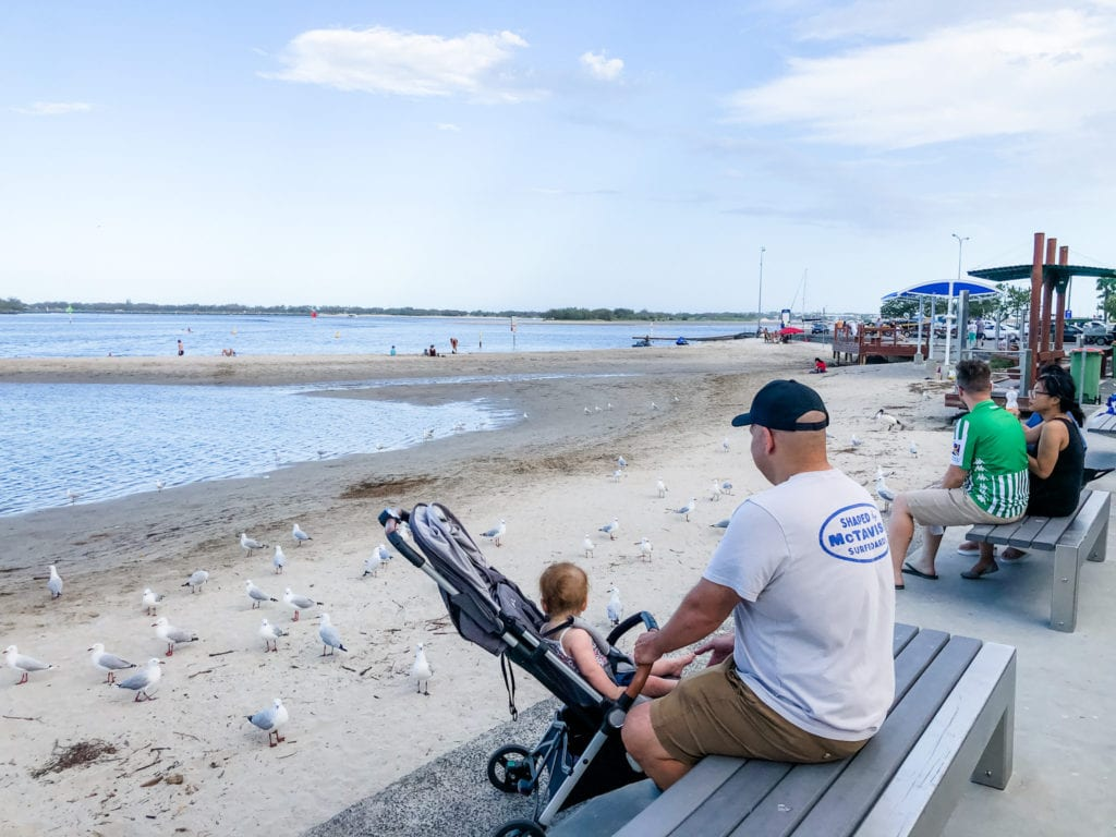 father and baby in a pram watching the birds at Harley Park, Gold Coast