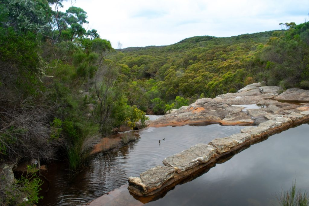 Wattamolla Dam is like a natural infinity pool amid the bushland! Credit: Shutterstock