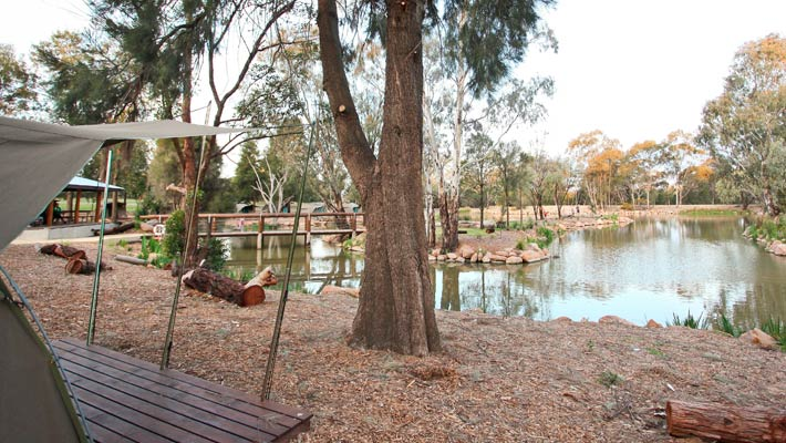 view of the billabong from the permanent tents at the Billabong permanent camping area at Dubbo Zoo
